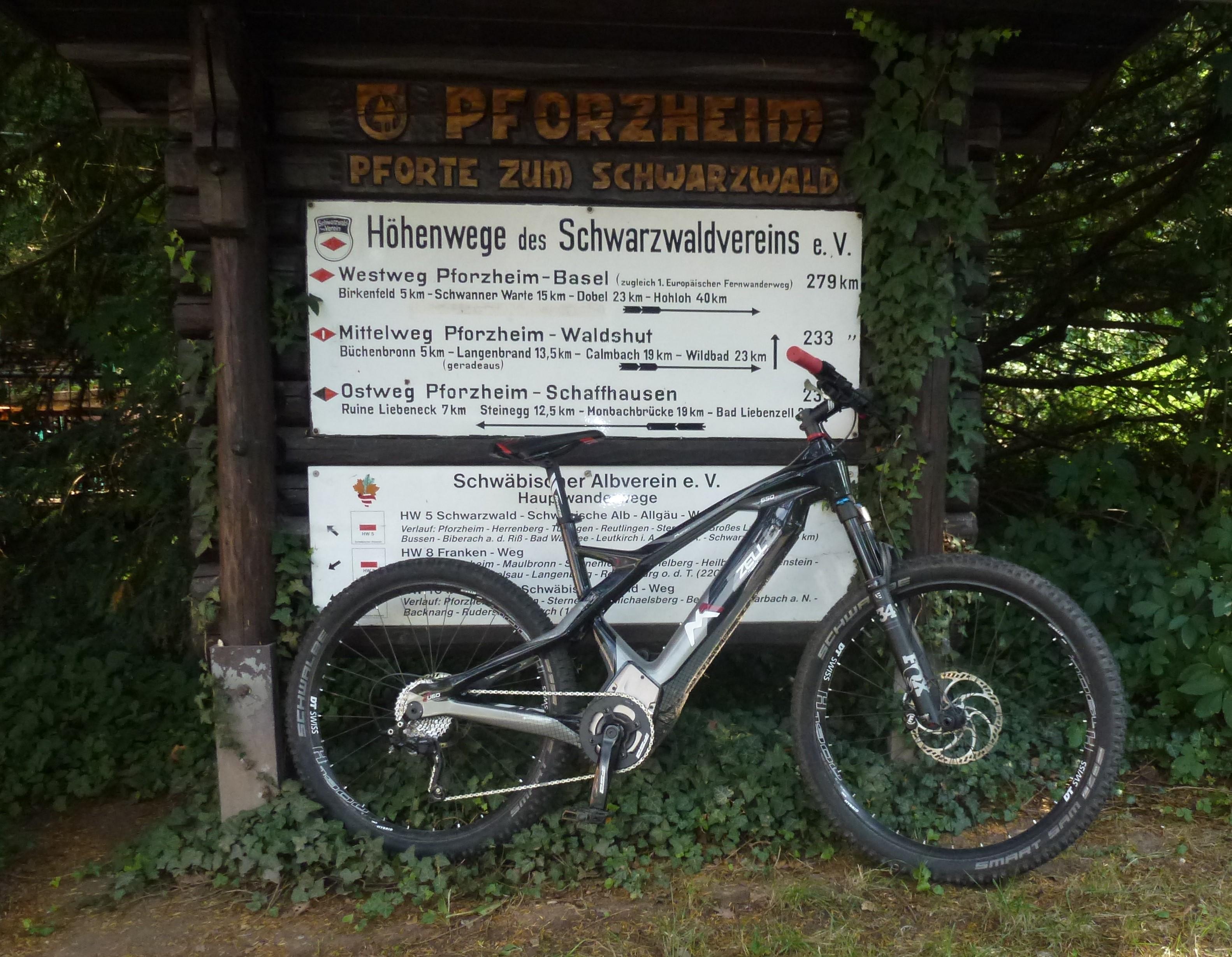 Carbon Hardtail E-Bike Leonberg